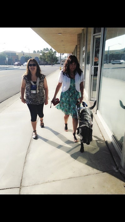 Walking with Priscilla and Christine using her guide dog Bronxie